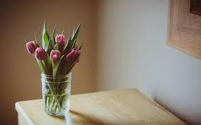 on table flowers pink tulips vase table hd desktop wallpapers 4k hd