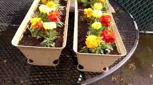 self watering planter cheap self watering planter boxes brobrycegardens youtube