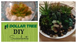 diy succulents dollar tree crafts home decor youtube