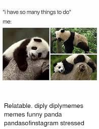 Funny Panda Memes - 25 best memes about funny panda funny panda memes