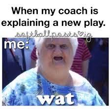 Funny Softball Memes - 68 best i can t i have softball images on pinterest softball