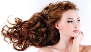 hair show 2015 hair show or freak show