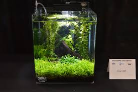 Aquascaping Plants Aquascaping Live 2016 Small Planted Tanks
