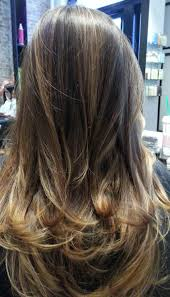 Best Natural Highlights For Dark Brown Hair Natural Highlights On Brunette Hair By Rayna Beauty Pinterest