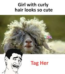 Curly Hair Meme - rvcj media girls with curly hair facebook
