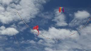 Barn Door Kite by Kites Over Flahertys Beach