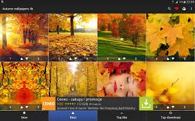 fantasy autumn wallpaper autumn wallpapers 4k android apps on google play