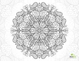 snail mandala flower free hard coloring pages snail free