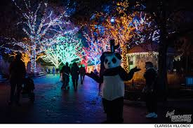 Zoo Lights Hours Chicago by Zoolights 2016 Photos Brightestyoungthings Dc
