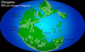 Altitude Map Of Usa by Multimedia Gallery The Supercontinent Pangaea Showing Regions Of