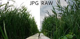 convertir varias imagenes nef a jpg webs gratis para convertir imágenes raw a jpg o png