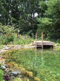 Natural Swimming Pool 384 Best Natural Pools Images On Pinterest Natural Pools