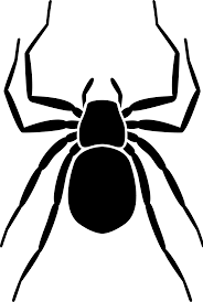 spider transparent background file noun project 175 svg wikimedia commons