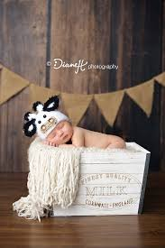 newborn photography mn newborn boy ih farmer with cow hat valley mn newborn