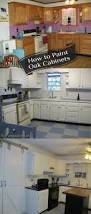 Updating Oak Kitchen Cabinets Best 25 Painted Oak Cabinets Ideas Only On Pinterest Painting