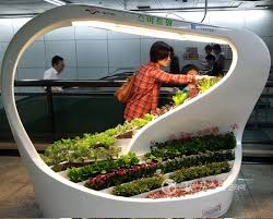 plants that don t need sunlight to grow green plants grow at underground subway station using led lights