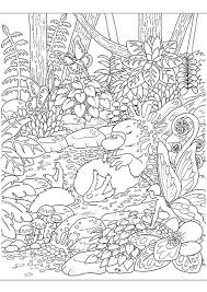platypus coloring pages colouring competition for the month of june u2013 la artistino u2013 peta