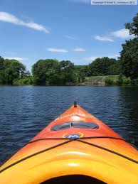new england nature notes birding by kayak lake cochituate in