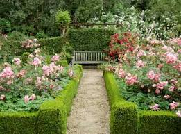rose garden design ideas shonila com