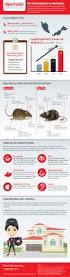 rats infestation in malaysia