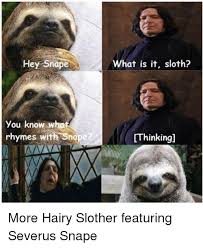 Severus Snape Memes - hey snape you know rhymes with snope what is it sloth thinking more