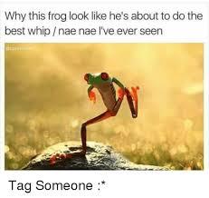 Nae Nae Meme - 25 best memes about whip nae nae whip nae nae memes