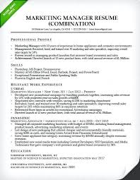 Government Sample Resume Sample Resume For It Jobs Marketing Manager Combination Resume