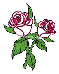 valentine roses vector royalty free stock image storyblocks