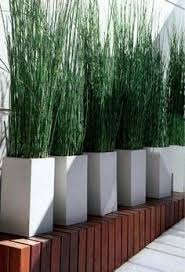 Privacy Walls For Patios by 22 Fascinating And Low Budget Ideas For Your Yard And Patio