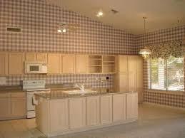 Whitewash Kitchen Cabinets Good Looking Whitewashed Kitchen Cabinets My Home Design Journey