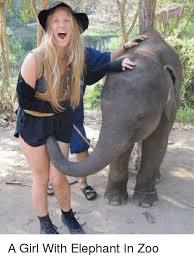 Elephant Meme - a girl with elephant in zoo funny meme on me me