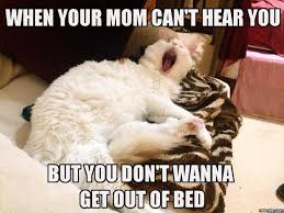 Get Out Of Bed Meme - when your mom can t hear you but you don t wanna get out of bed