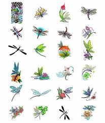 small pretty dragonfly tattoos tattooed dragonflies and