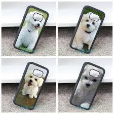 bichon frise long legs online buy wholesale bichon frise from china bichon frise