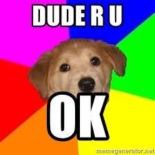 Ru Ok Meme - dude r u ok advice dog meme generator