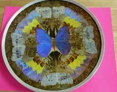 butterfly platter butterfly tray american 20th century made from the