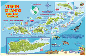 Map Caribbean Sea by Virgin Islands Map U0026 Coral Reef Creatures Guide Franko Maps