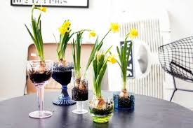 Easter Decorations For The Home Martha Stewart by Decorating With Daffodils The Celebration Society