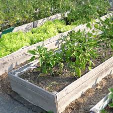 Best Type Of Mulch For Vegetable Garden - plan and plant a vegetable garden