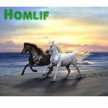 sous cheval bureau get cheap noir et blanc cheval peinture aliexpress com