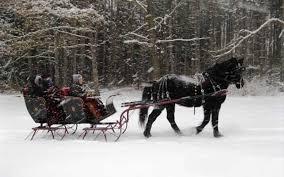 lake michigan winter area attractions sleigh rides saugatuck mi