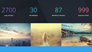 splash page template 20 best landing page wordpress themes for