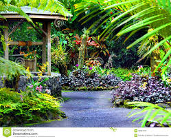 Hawaiian Tropical Botanical Garden by Wishing Well Royalty Free Stock Photography Image 35951707