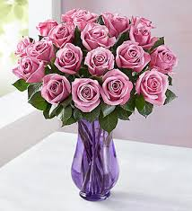 purple roses for sale for purple roses 1800flowers 104518