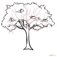 clipart tree drawing how to draw a tree step 1 how to