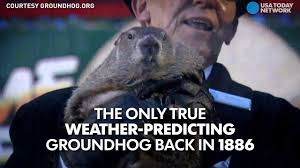 go below the surface of groundhog day youtube