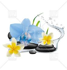 Blue Orchid Flower Symbols Of Spa Blue Orchid Flower Water Splash And Zen Stone
