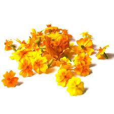 Edible Flowers Fresh Edible Flowers Herbs Unlimited
