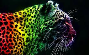neon animal wallpapers wallpapersafari