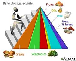 what is wrong with our current food pyramid kelly the kitchen kop
